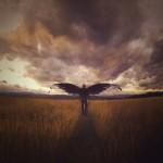 Migration by Joel Robison